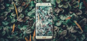 blog-header-8-JAN